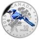 Kanada - 10 CAD Singvögel Blauhäher - 1/2 Oz Silber