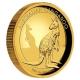 Australien - 100 AUD Känguru 2016 - 1 Oz Gold Proof HR