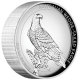 Australien - 8 AUD Wedge Tailed Eagle 2016 - 5 Oz Silber PP HR