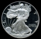 USA - 1 USD Silver Eagle 1991 - 1 Oz Silber PP - The United States Mint