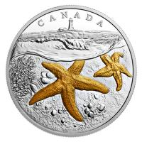Kanada - 20 CAD Sea to Sea Seestern 2017 - 1 Oz Silber