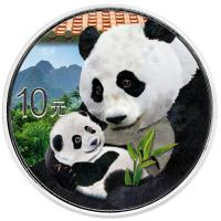 China - 10 Yuan Panda 2019 - 30g Silber Color