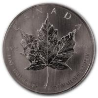 Kanada - 50 CAD Maple Leaf (Diverse) - 1 Oz Palladium (DIFF)