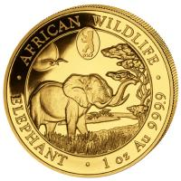 Somalia - 1000 Shillings Elefant 2019 WMF Berlin - 1 Oz Gold