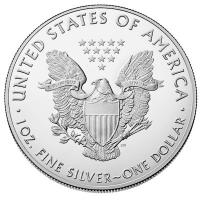 USA - 1 USD Silver Eagle First Step 2019 - 1 Oz Silber Color