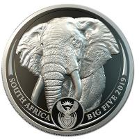 Südafrika - 50 Rand Big Five Elefant 2019 - 1 Oz Platin