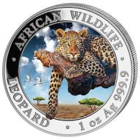 Somalia - African Wildlife Leopard 2020 - 1 Oz Silber Color