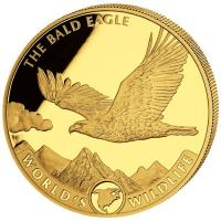 Kongo - 100 Francs Worlds Wildlife Bald Eagle 2021 - 1 Oz Gold
