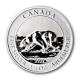 Kanada - 8 CAD Polar Bär 2013 - 1,5 Oz Silber