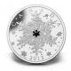 Kanada - 20 CAD Crystal Snowflake Winter 2013 - 1 Oz Silver