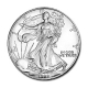 USA - 1 USD Silver Eagle 1998 - 1 Oz Silber
