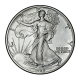 USA - 1 USD Silver Eagle 1989 - 1 Oz Silber
