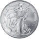 USA - 1 USD Silver Eagle 2007 - 1 Oz Silber